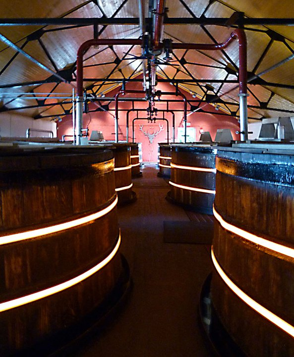 Dalmore Distillery Light Tape
